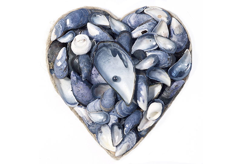 Craft Workshop Mussel Heart